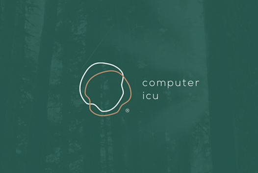 The Computer ICU